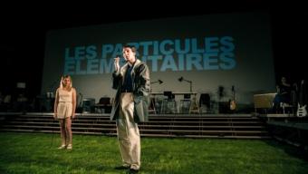Les particules élémentaires, Houellebecq superstar