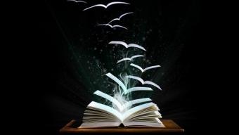 L'été indien: des feuilles des arbres à celles des livres