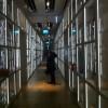 Le musée de l'homme, Genesis