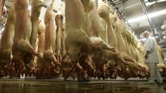 La viande, stupeur et tremblement