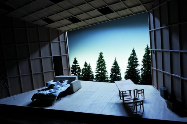 611435-theatre-de-la-colline-2013-2014-le-canard-sauvage-de-henrik-ibsen-mes-et-sceno-stephane-braunschweig