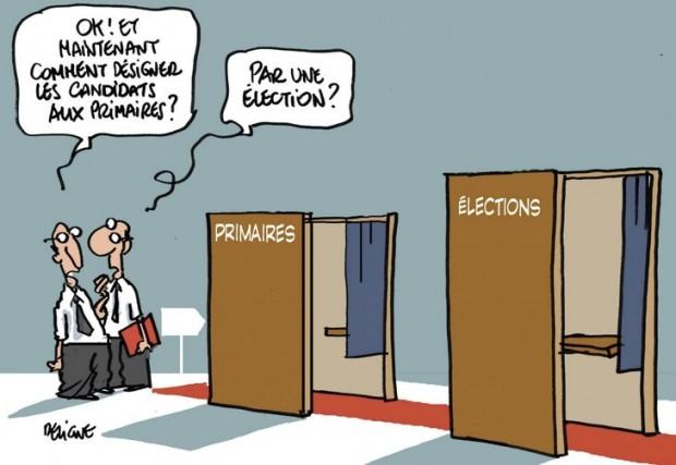 les-primaires-invitent-dans-elections-municipales_0_730_502